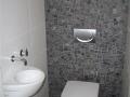 toilet 2007 (2) (Small)
